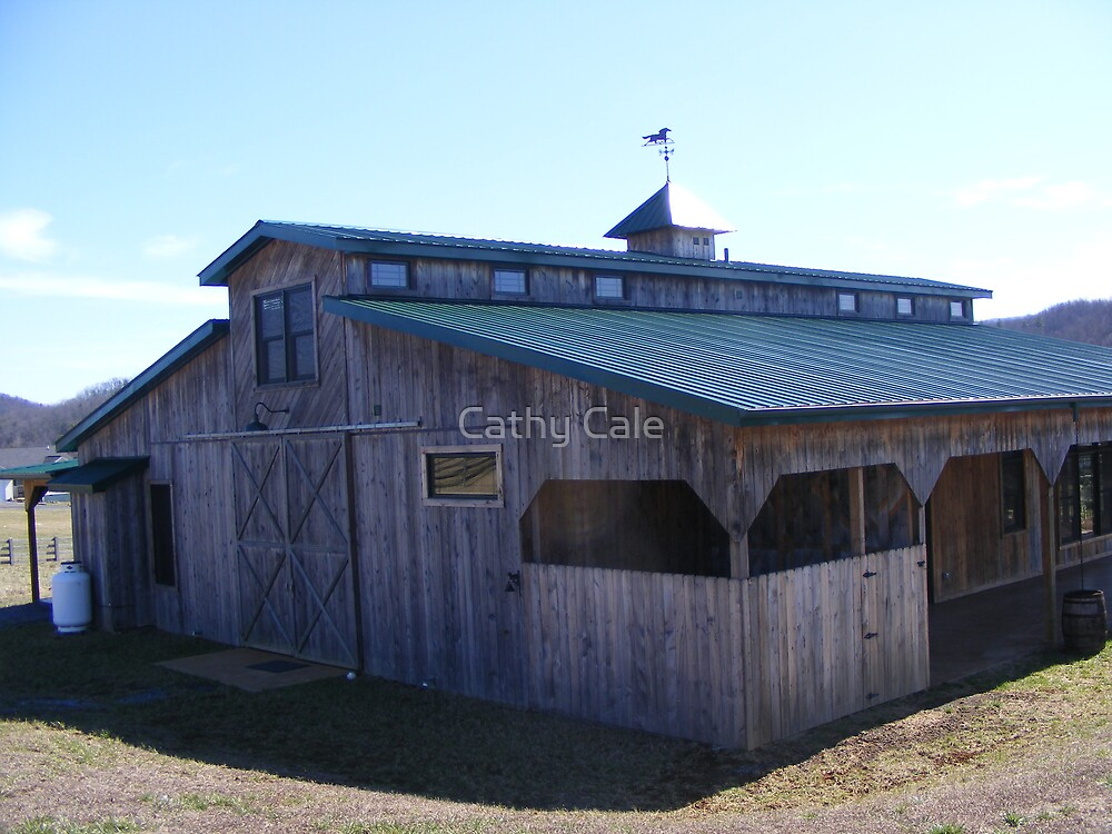 HOUSE BARN by Cathy Cale