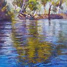 Reflections of the Goulburn by Lynda Robinson