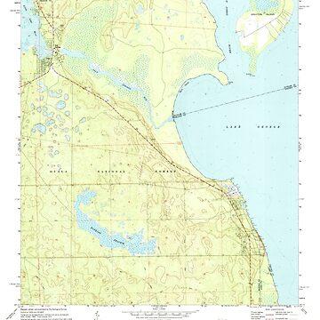 USGS TOPO Map Florida FL Salt Springs 348388 1970 24000 by wetdryvac