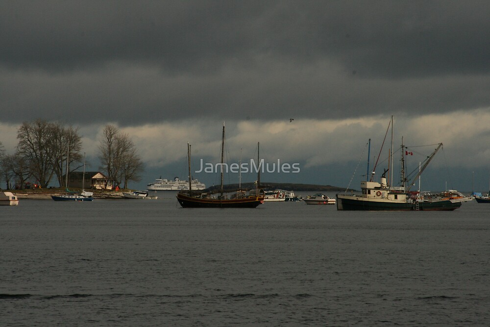 Nanaimo Harbour by JamesMules