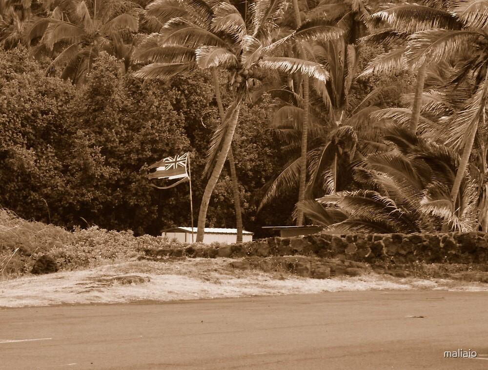 Hawaiian Home Lands by maliaio