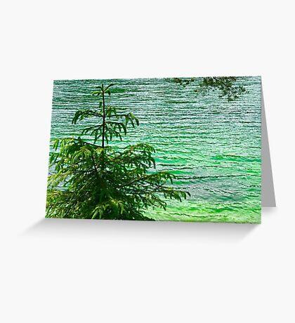 Tree & Green Lake 2 Greeting Card