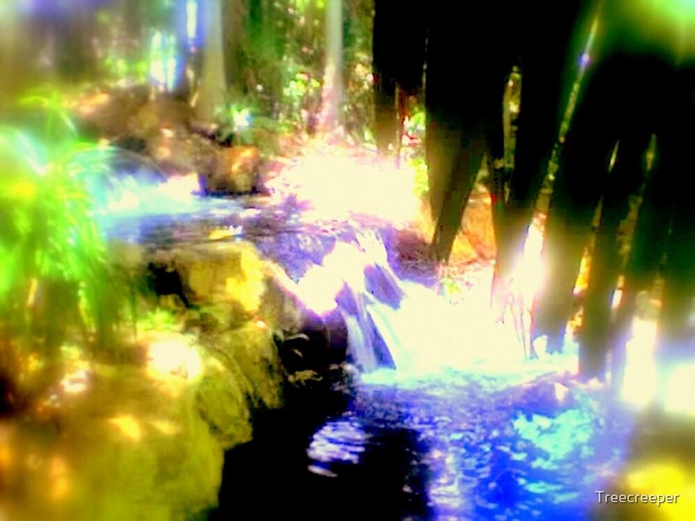 Kershaw Gardens by Treecreeper