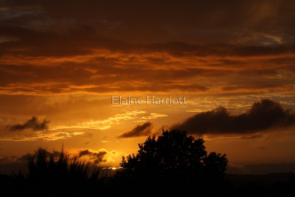 Glimpse of a new day by Elaine Harriott
