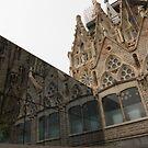 Reflecting on Sagrada Familia, Antoni Gaudi's Masterpiece by Georgia Mizuleva