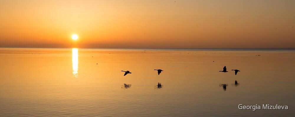 Wings at Sunrise by Georgia Mizuleva
