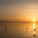 Wings at Sunrise - Toronto Skyline With Flying Geese by Georgia Mizuleva