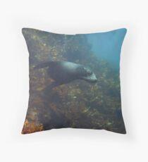 Curious Fur Seal Throw Pillow