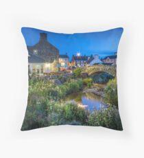 Aberdaron village with wild flowers at night. Throw Pillow