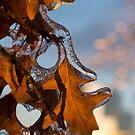 Sparkling Oak Leaf Jewels by Georgia Mizuleva