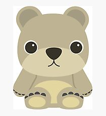 cute teddy bear Photographic Print