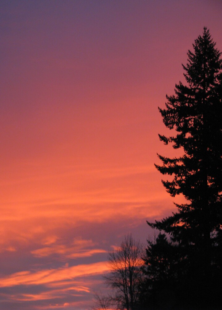 Oregon sunset by Corina