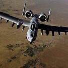 US-Luftwaffe A-10 Thunderbolt von StocktrekImages