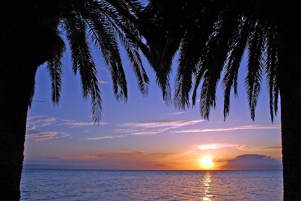 Sunset under the palms by Arie Koene