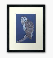 Australian Masked Owl, colour pencil art Framed Print
