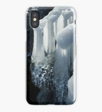 Elegant Christmas Ornaments From Mother Nature iPhone Case/Skin