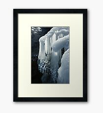Elegant Christmas Ornaments From Mother Nature Framed Print