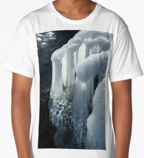 Elegant Christmas Ornaments From Mother Nature Long T-Shirt