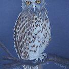 Australian Powerful Owl, colour pencil art by Marta Lett
