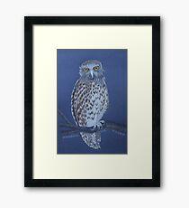 Australian Powerful Owl, colour pencil art Framed Print