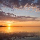 Golden Pink Toronto Sunrise by Georgia Mizuleva