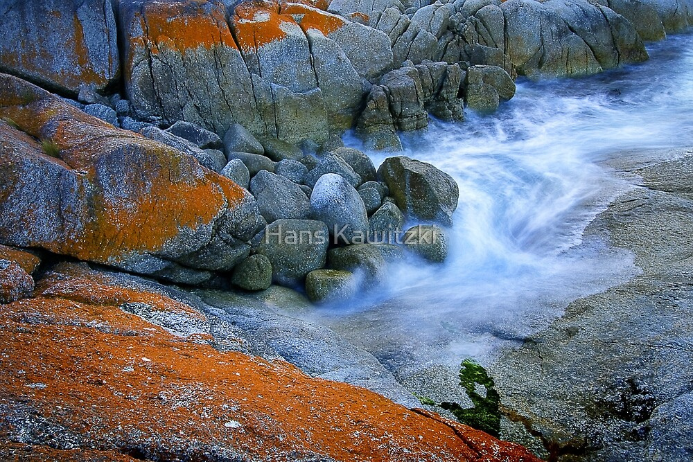 0903 Lichen Rocks - Bicheno Tasmania by Hans Kawitzki