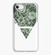 Elemental Alchemy: Earth (colour) iPhone Case/Skin