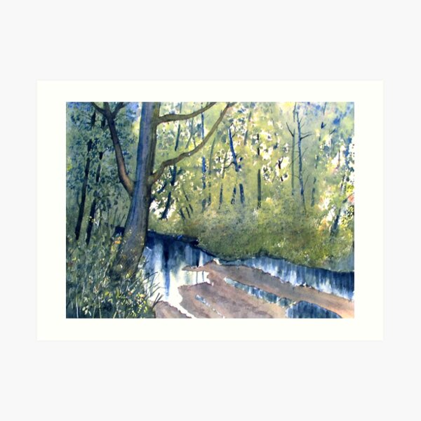 Waterlogged Forest Trail Art Print