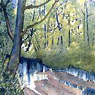 Waterlogged Forest Trail by Glenn Marshall