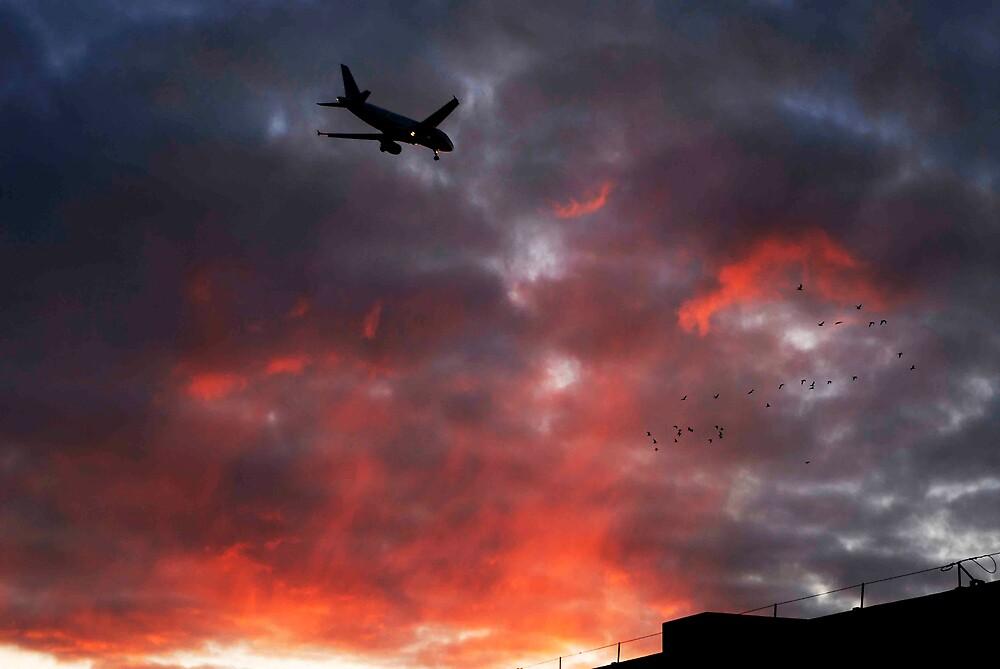 Long Flight by Jedy