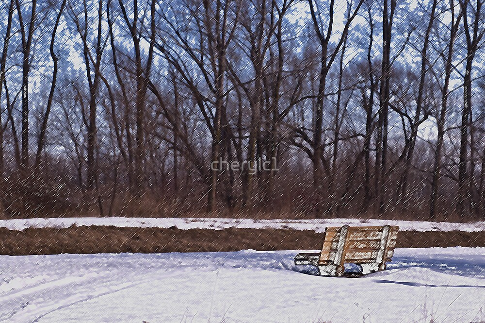 The Bench by cherylc1