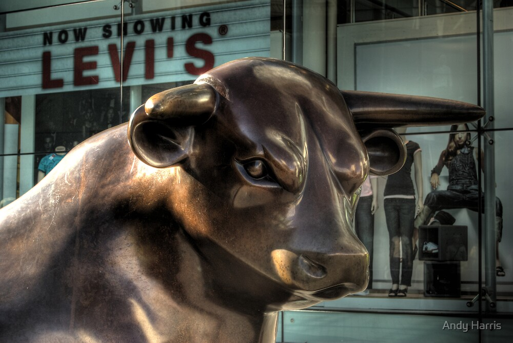 Bull by Andy Harris