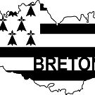 Breton on Brittany Flag by RiverbyNight
