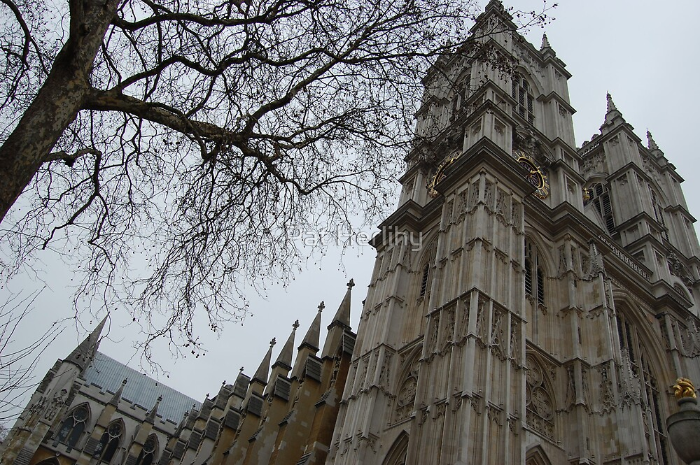 Westminster Abbey a little bit tipsy!!!! by Pat Herlihy