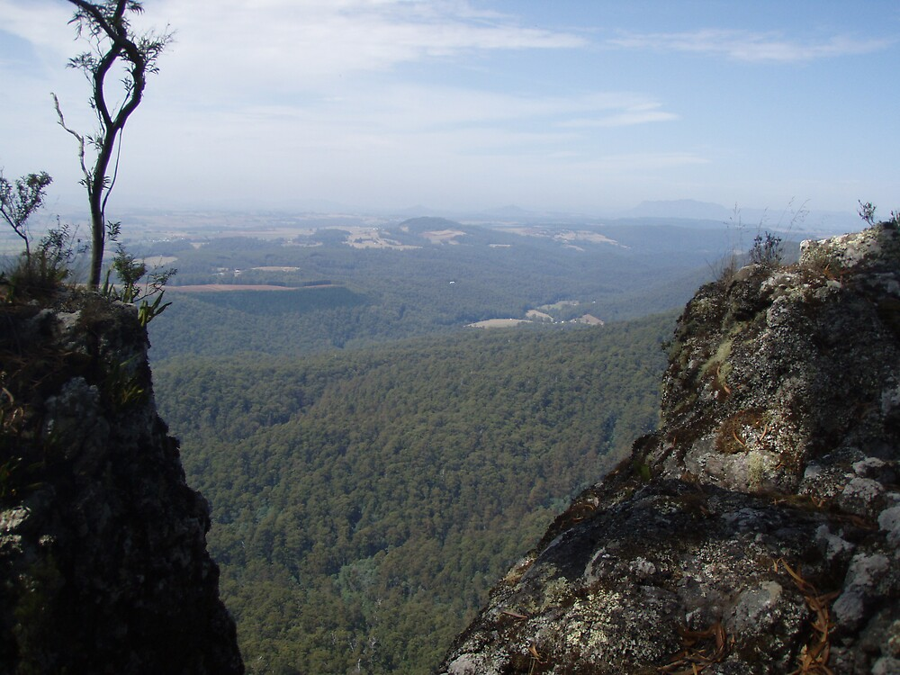 view from Mt Gnomon looking way back towards Mt Roland, Tasmania by gaylene