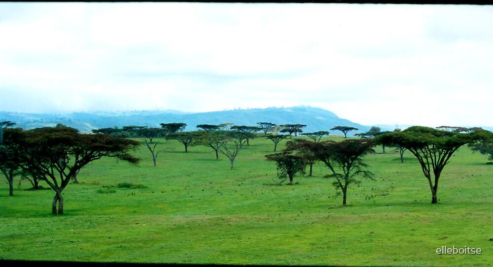 african landscape by elleboitse