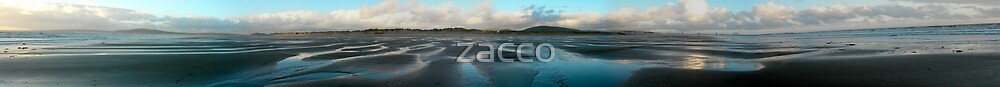 BEACH PANO by zacco