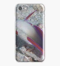 Decorated Dartfish iPhone Case/Skin