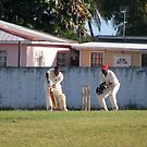 A game of Cricket by Michael Morris