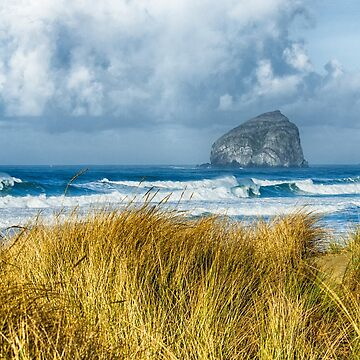 Haystack Rock during a storm  by Zigzagmtart