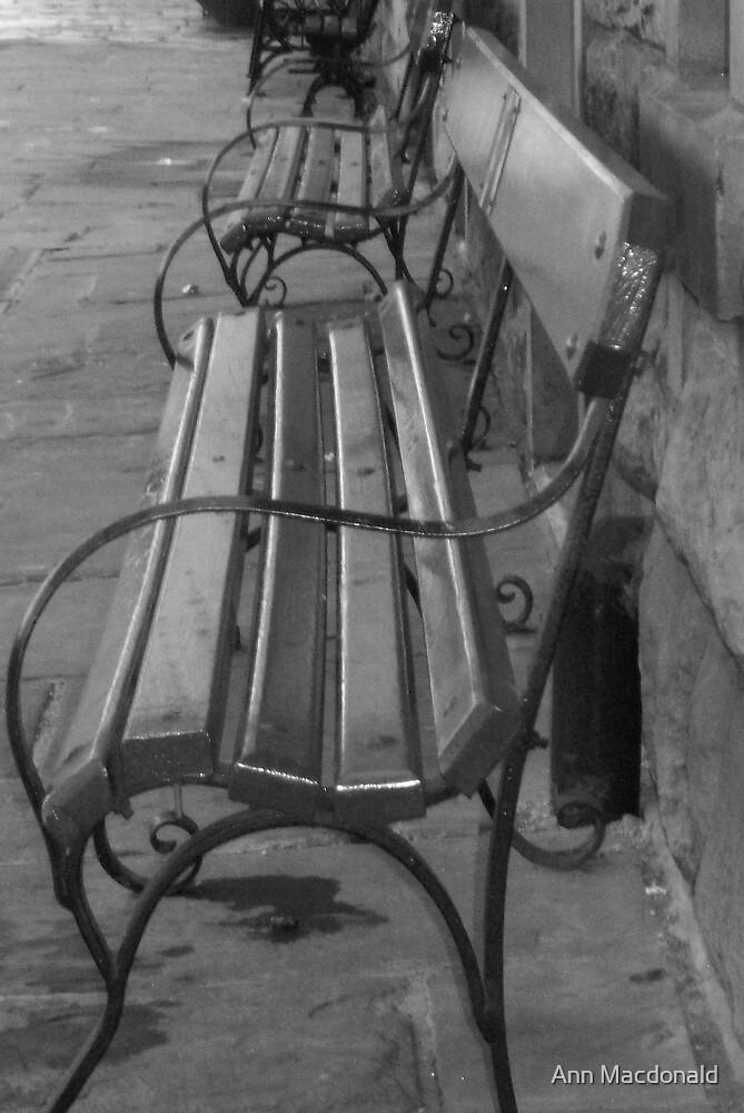seats by Ann Macdonald
