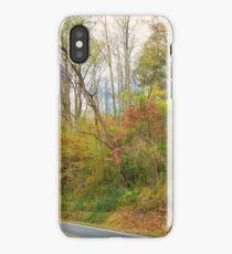 Enchanting Drive iPhone Case/Skin