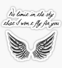 No limit in the sky that I won't fly for you Sticker