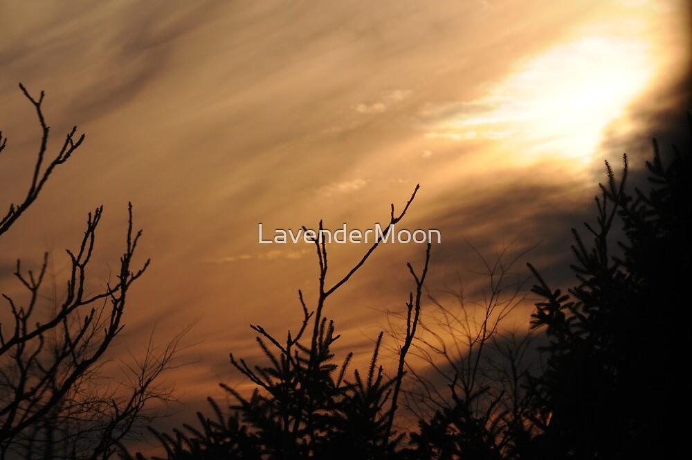Shrouded Dusk by LavenderMoon