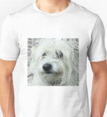 Shaggy Dog T-Shirt