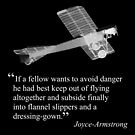 Joyce-Armstrong's advice on flying by A57737