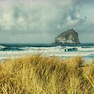 Haystack Rock during a storm from Bob Straub State Park, rustic, Pacific by Zigzagmtart