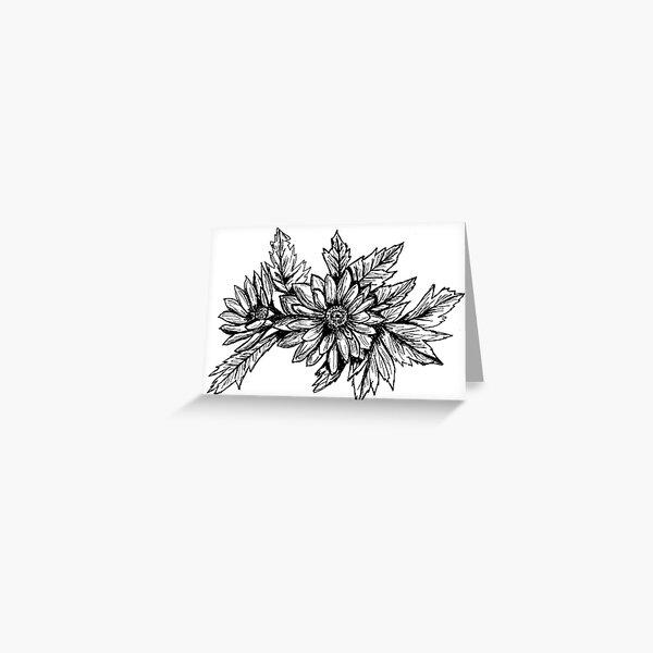 Pen and Ink Chrysanthemum Greeting Card