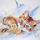 « Elio, le chaton tendre et coquin » par Marianne Sol'So