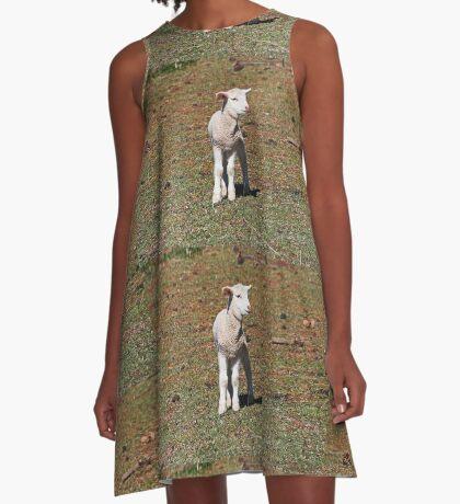 Kleines Lamm verloren A-Linien Kleid